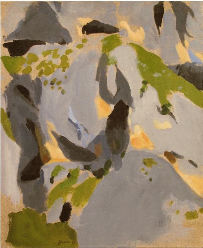 Figure 9 Paroi brigasque 1993 46x38